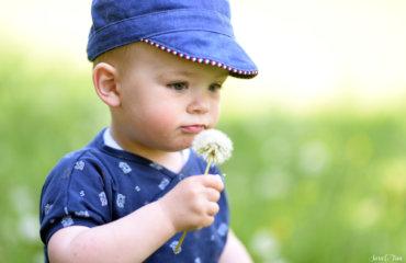 Esel Emil und das Sommerset Zuckerwatte